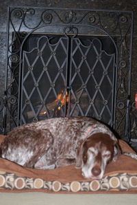 Dude takes a morning nap in front of the fire.
